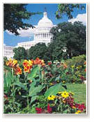 washington dc travel nursing