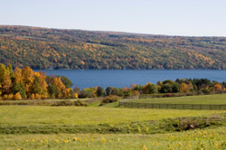 Finger Lakes - Buffalo, NY