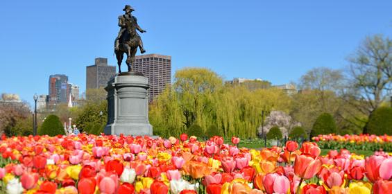 Boston, Massachusetts Public Garden