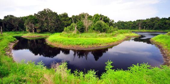 Gainesville horseshoe bend lake