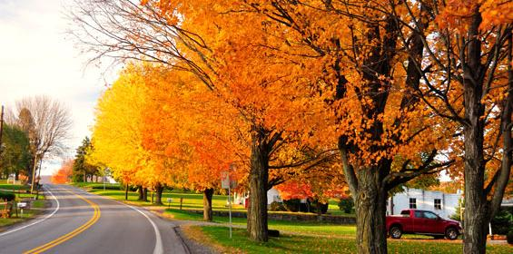 Scenic road during fall in Pennsylvania