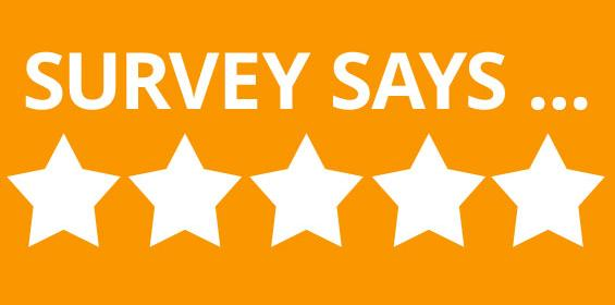 Traveler Survey Reviews