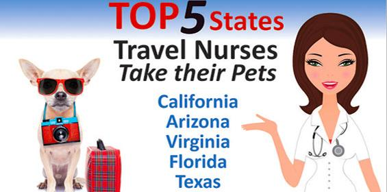 Infographic tips for travel nurses with Pets