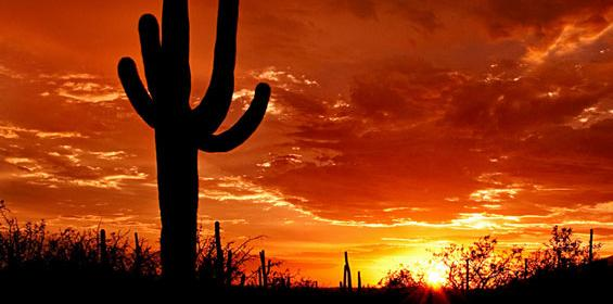 Tucson Arizona Sunset