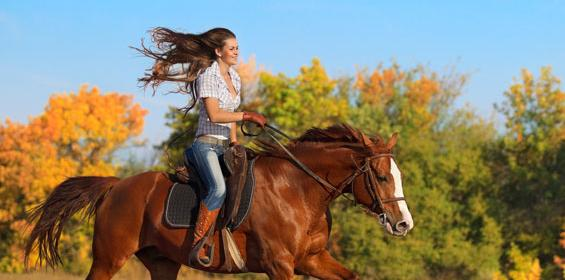 Dallas, Texas Girl riding on Horse
